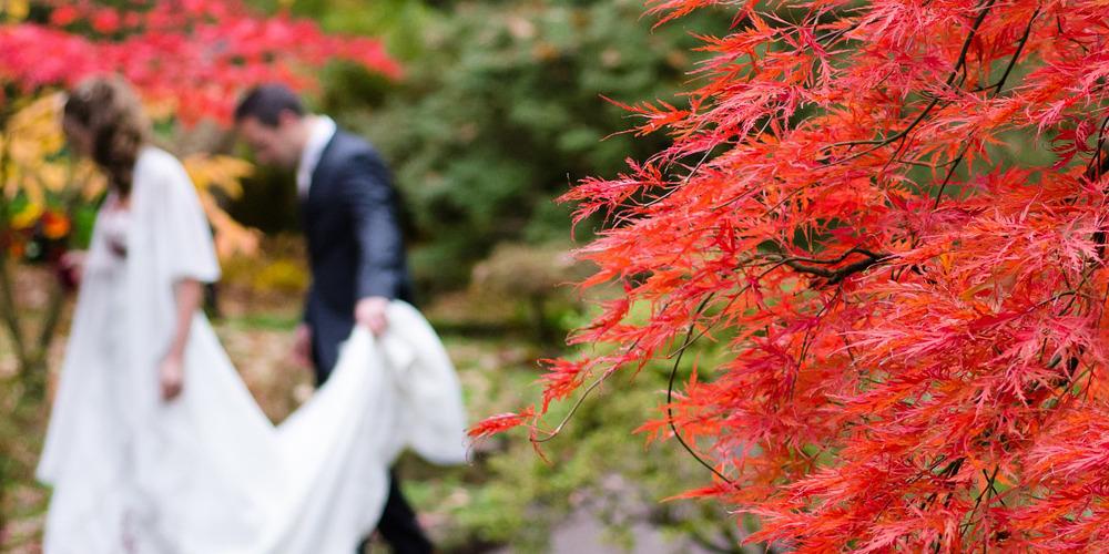 Trauung Ohne Hochzeitsfeier Traumtrauringe Ratgeber